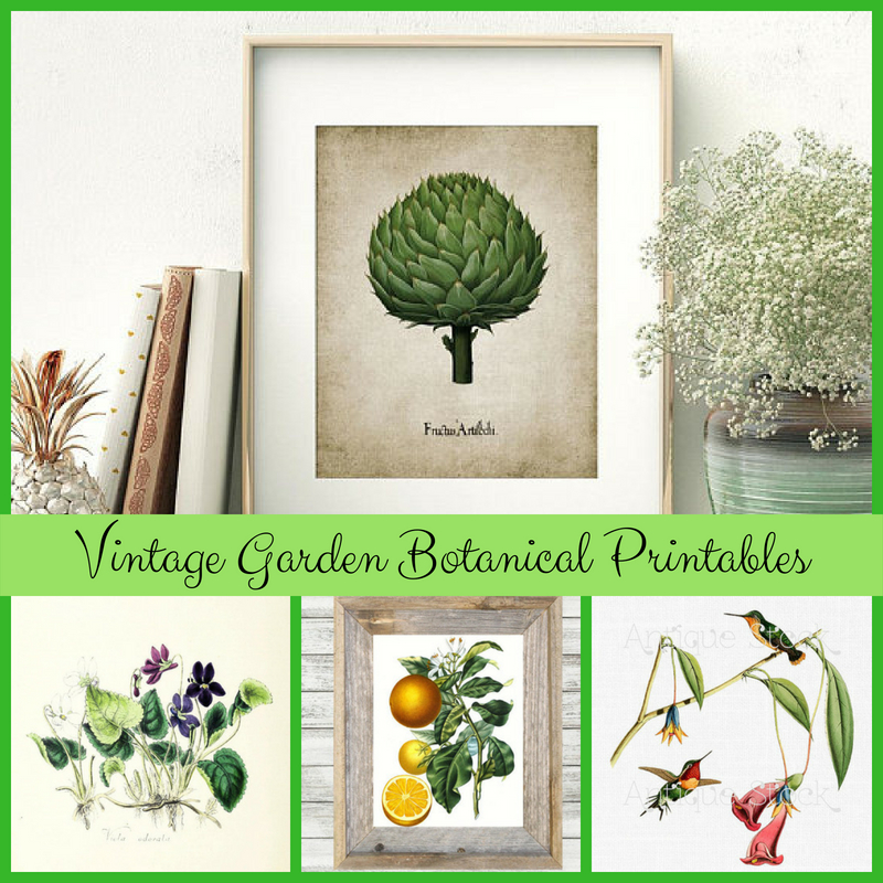 Vintage Garden Botanical Printables for Seasonal Decor and Gifts